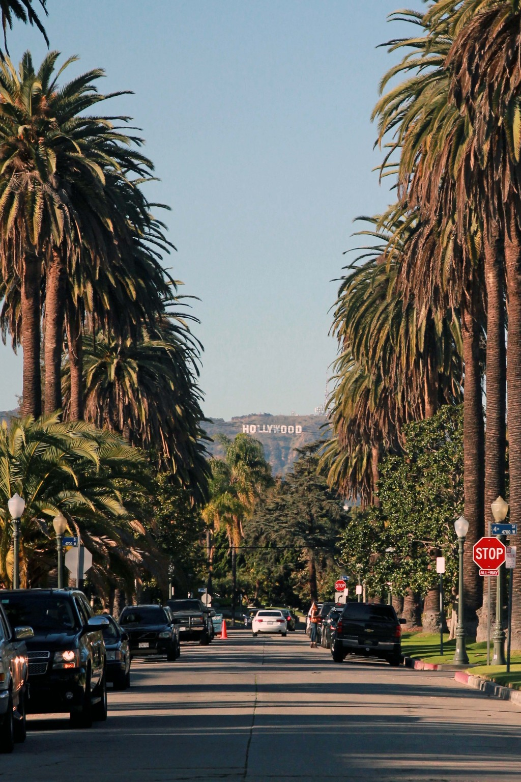 Hollywood sign on palm tree lined street