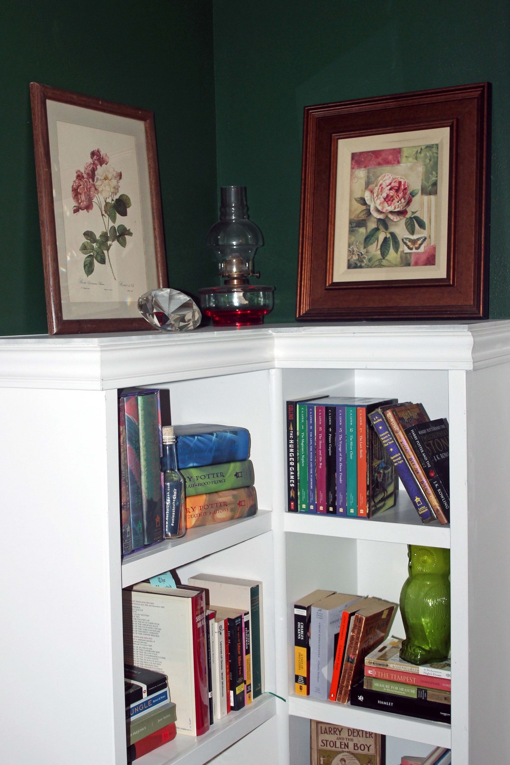 Historic home bookshelf ideas