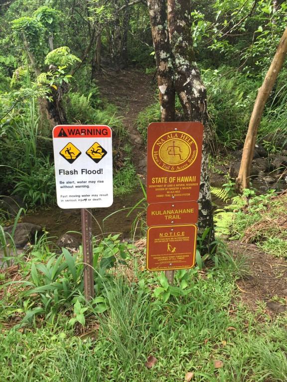 1 - Moanalua Valley Park Kulana'ahane Trail