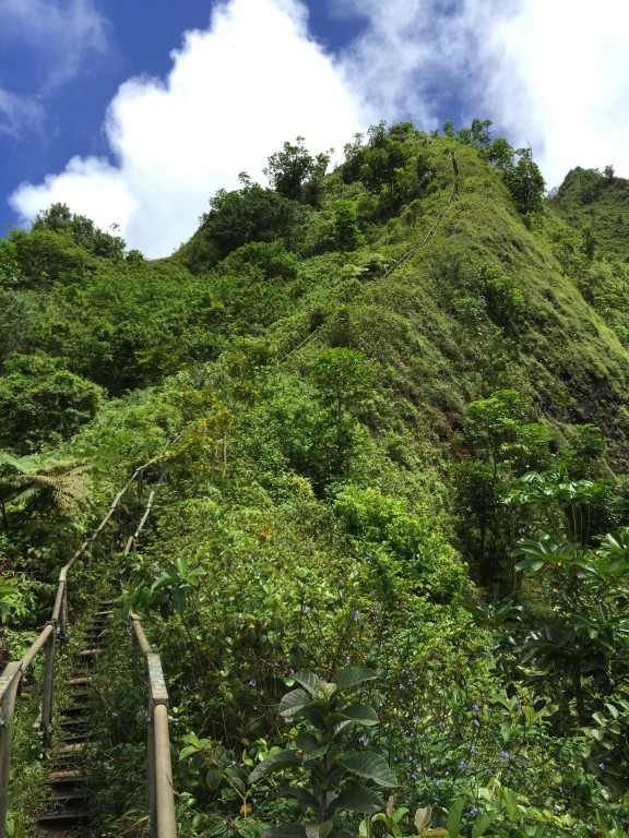 34 - Looking up at the Haiku Stairs aka Stairway to Heaven