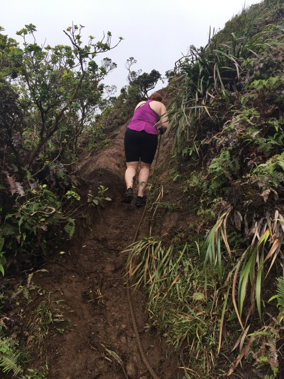 8 - Choss scrambling at Moanalua Middle Ridge Trail